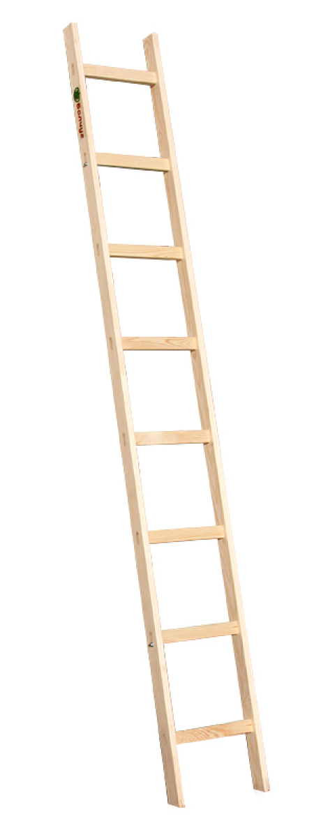 Приставная лестница с перекладинами 1х8 Балчуг