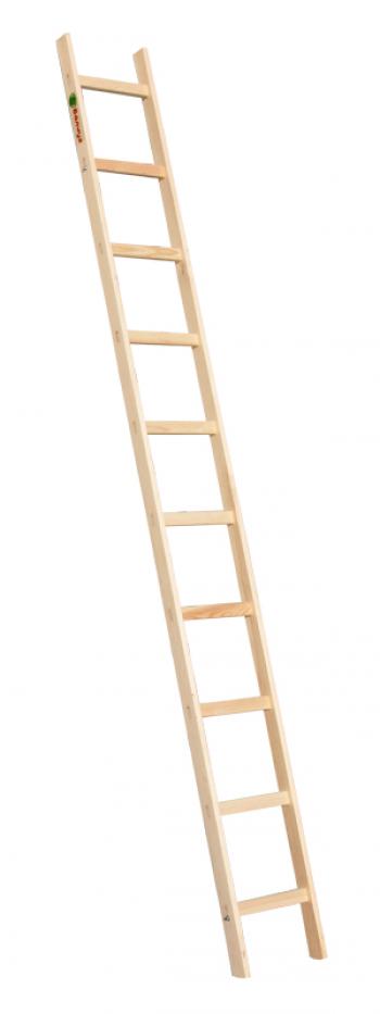 Приставная лестница с перекладинами 1х10 Балчуг
