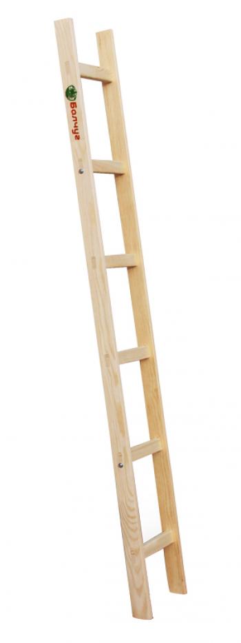 Приставная лестница с перекладинами 1х6 Балчуг